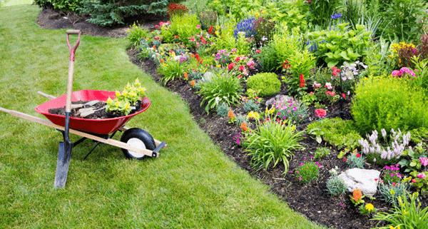 Garden Appliances