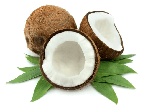 Coconut-lose weight